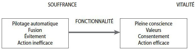 """Résultat de recherche d'images pour """"hexaflexe act"""""""