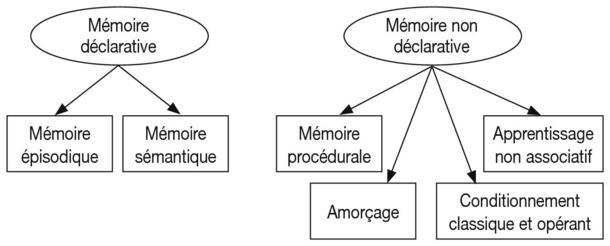 Probleme de memoire episodique