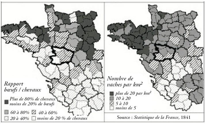 Lélevage Dans Le Maine Et Loire Au Xixe Siècle Cairninfo
