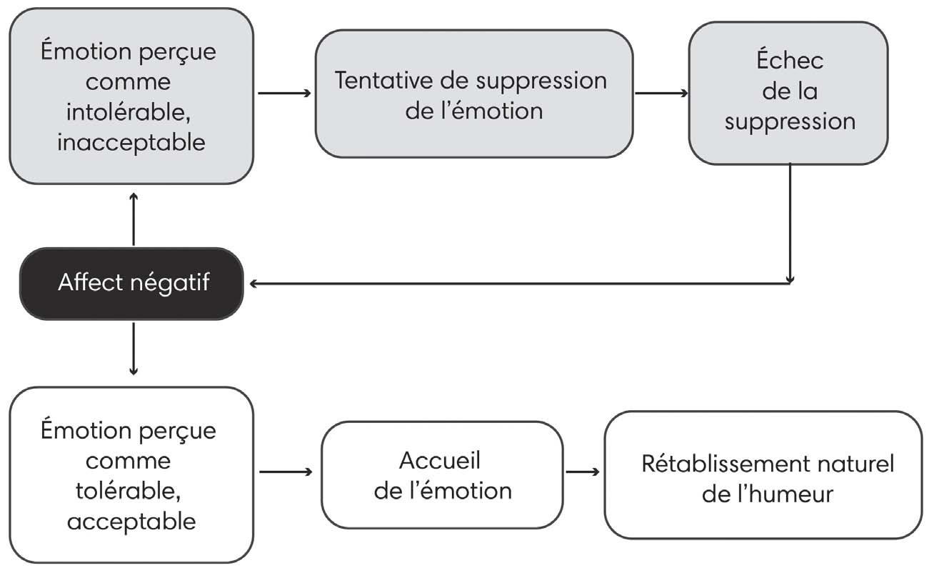Chapitre 6 Stimuler Les Pratiques De Coaching Emotionnel