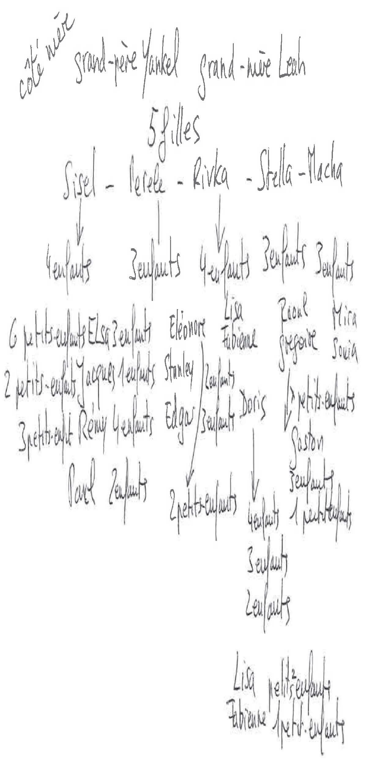 Élégant Dessin Arbre Genealogique Gratuit Imprimer