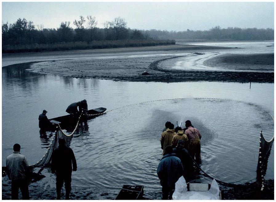 âge illégal datant en Louisiane ashawo Hook up Nigeria