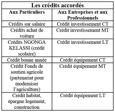 1ae5b97db2523 L évaluation du risque de crédit des entreprises  cas de la banque ...