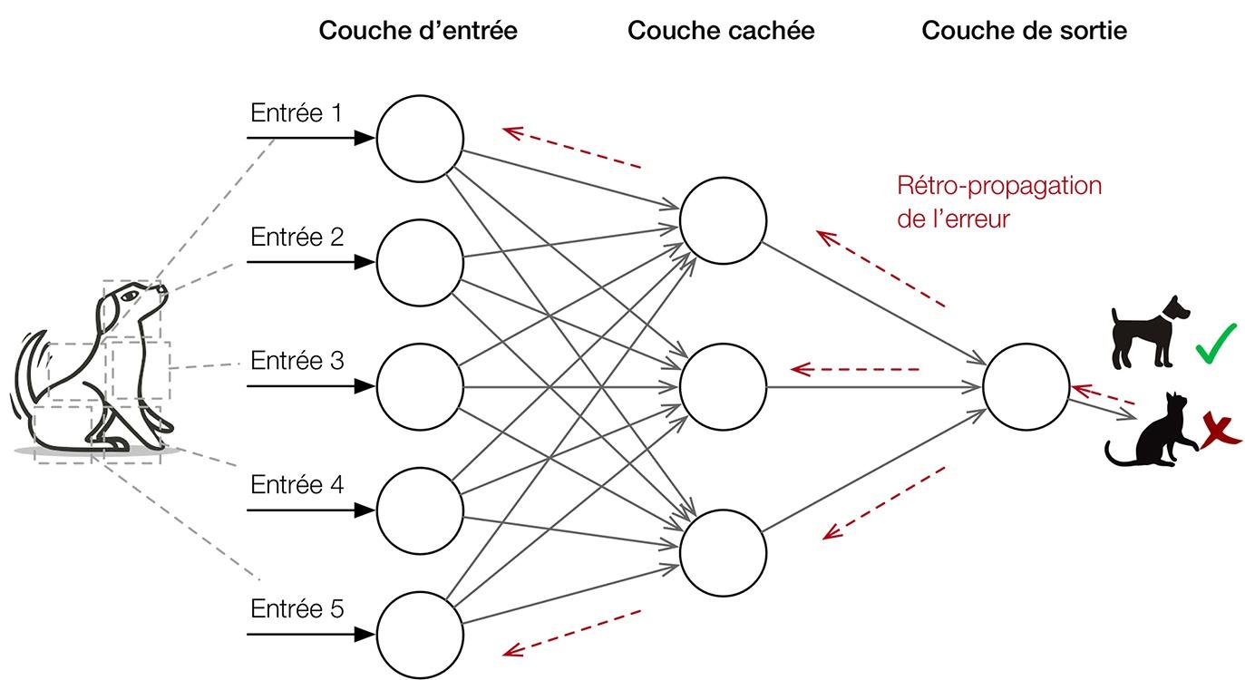 """Résultat de recherche d'images pour """"réseau neuronal rétropropagation"""""""
