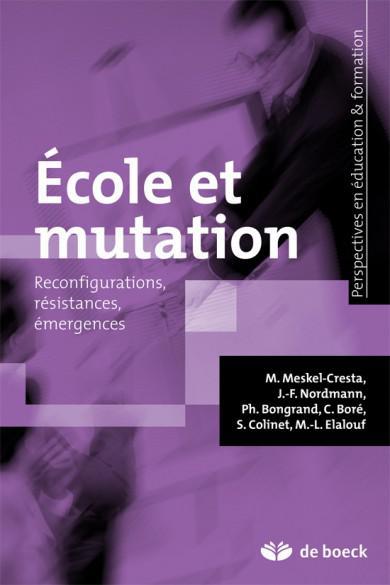 Les Tice Et La Geographie Scolaire Approche Autobiographique Cairn Info