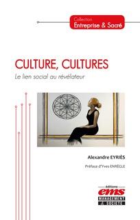 Chapitre 4  Culture(s) numérique(s)   Cairn info